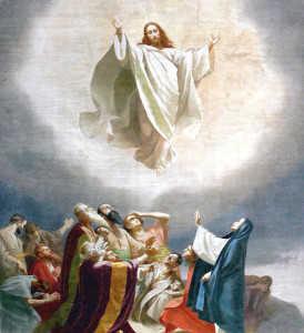 "<span class=""orderbynum"">134</span>The Ascension"